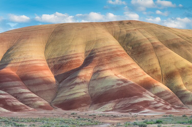 Painted Hills SP16-244
